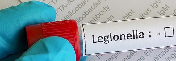 Milyen gyakori a legionárius betegség?