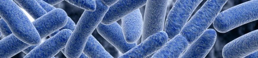 Megjelent az OEK Legionella módszertani levelének új kiadása